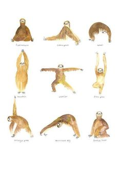 If a sloth can do it...
