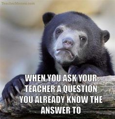 Every teacher has experienced these typical student questions... everyday.