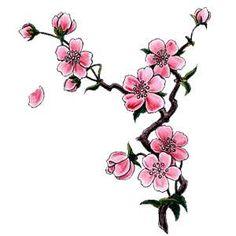 Possible Sakura no ki tatt