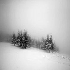 фото aleksandr_nesterovskyi Ukraine, Carpathian mountains Carpathian Mountains, Ukraine, Vsco, Instagram Posts, Nature, Artist, Outdoor, Traveling, Room