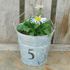 "Galvanized Bucket...with flowers...""5"", could do all the numbers for your house as a cute decoration for front yard."