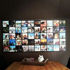 Instawall of Wendy www.instawall.nl