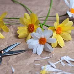 21 best paper flowers by paper play design images on pinterest a day of daisies next time i might make the centres bigger papercraft paper flowersdaisiescentreplayhandmadethe mightylinksfo