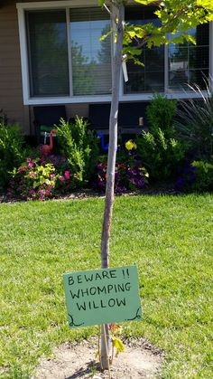 Beware of that huge tree! Diy Party, Party Ideas, Harry Potter Diy, Plants, Ideas Party, Plant, Planets