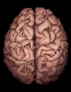 A brain of bodies.