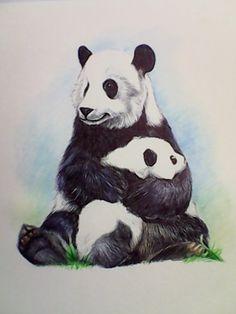 Panda y pandita en esferos y lápices acuarelables