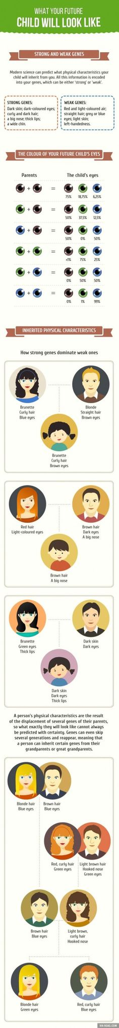 Amazing Guide To What Your Future Child Will Look Like