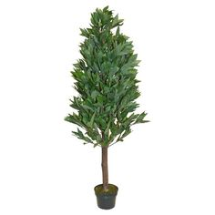 Faux French laurel shrub with a natural wood trunk.  Product: Faux floral arrangementConstruction Material: Poly...