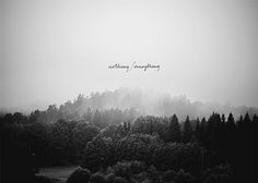 nothing/everything