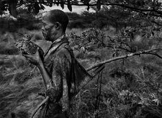 Sebastiao Salgado, Bushman, Botswana [man with bird], gelatin silver print Edward Weston, Andre Kertesz, Robert Doisneau, Vivian Maier, Documentary Photographers, Famous Photographers, Contemporary Photographers, Ansel Adams, Urban Photography