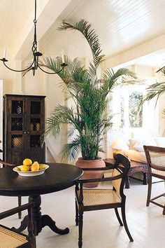 Country Dining Romance Romantic Tropical Villa chair property home living room condominium plant dining table West Indies Decor, West Indies Style, British West Indies, Tropical Home Decor, Tropical Interior, Tropical Houses, Tropical Furniture, Tropical Colors, Tropical Design