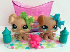 Littlest Pet Shop RARE Pair of Puppies #1353 & #1482 w/Crib & Accessories #Hasbro