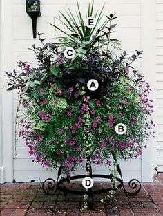 Use our plant-by-numbers guide to create bold, beautiful, and eye-catching container gardens. #ContainerGarden