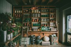 A career interview with Anna Potter, founder of Sheffield flower shop Swallows and Damsons