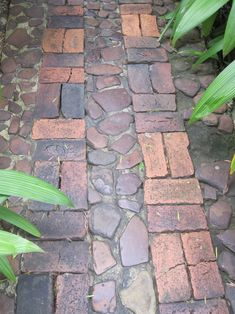 Small stones and bricks are combined in this vintage garden path