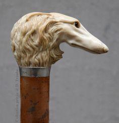 Canne en ivoire et jonc de Malacca - Bague en argent - Tête de lévrier afghan - XIXè S.