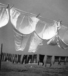 Herbert List  GERMANY. Hamburg. Laundry at Finkenwerder. 1930.