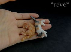 Miniature Cats Sleeping * Handmade Sculpture * by ReveMiniatures.deviantart.com on @deviantART