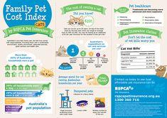 Gráfico com alimentos permitidos e proibidos para cães