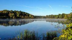 Barton Nature Area, Ann Arbor, MI.