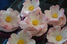 Dogwood cupcakes