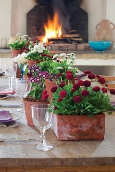 To beat winter blues bring the outside in and enjoy colourful, beautifully scented plants in your home.