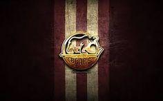 hershey bears logo - Google Search Hershey Bears, Bear Logo, Logo Google, Juventus Logo, Google Search