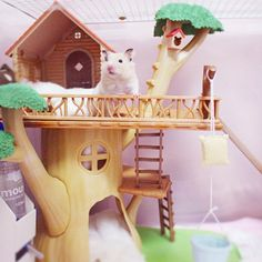 HAMSTER IN TREEHOUSE :)