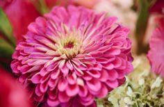 Real Wedding Sneak Peek: Summer Blooms