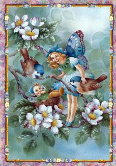Shirley Barber fairies August
