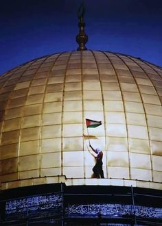 علم فلسطين dome of rock with the flag of Palestine Palestine History, Israel Palestine, Terra Santa, Simple Iphone Wallpaper, Dome Of The Rock, Visit Egypt, Les Religions, Sad Pictures, Precious Children