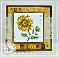 Dream Laine: Sunflowers for Spectrum Noir September Challenge. Sunflower Power - Power Poppy Spectrum Noir markers/pencils #spectrumnoir #powerpoppy #sunflower #floral