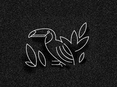 Tucan at Midnight by Andrew Colin Beck #Design Popular #Dribbble #shots