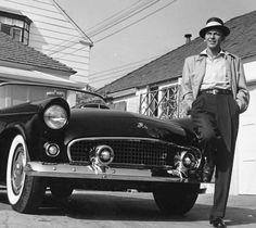 Frank Sinatra from hollyhocksandtulips