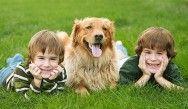Segundo pesquisa, crianças que possuem animais se sentem mais felizes e inteligentes