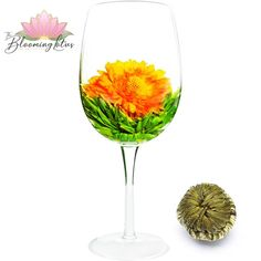 Marigold Altar White Blooming Tea This is also a refreshing combo of hand-tied White tea Maofeng with Marigold, and White tea in the center. Flower Tea, Marigold, Teas, Altar, Wine Glass, Bloom, Tableware, Dinnerware, Tees