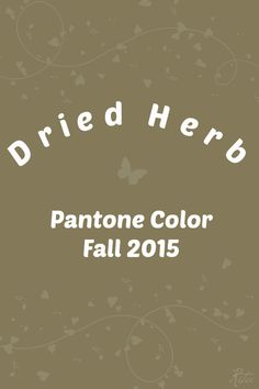 Pantone Dried Herb / Spring 2010 & Fall 2015
