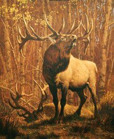 Ezra Tucker Art