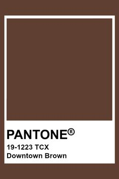 Pantone Tcx, Pantone Swatches, Color Swatches, Pantone Colour Palettes, Pantone Color, Colour Schemes, Color Trends, Brown Pantone, Brown Aesthetic