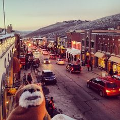I'm having a great time watching movies and going to parties here at the 2014 Sundance film festival!#sundance #filmutah #ewokadventures#sundance2014