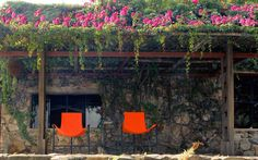Mexico's Greenest Hotels Offer Guests a Certain 'Om'-biance: Verana in Yelapa, Jalisco