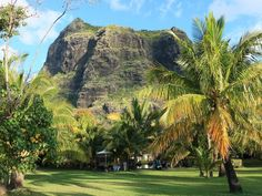 Einfach wunderschön !! #taipan_mauritius #mauritius Mauritius, Hotels, Strand, Golf Courses, Tropical Paradise, Ocean, Island, Simple, Nice Asses