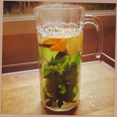 La Gourmandise me va si bien ! : le thé glacé à la menthe du Jardin