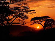 Tanzania, Africa.