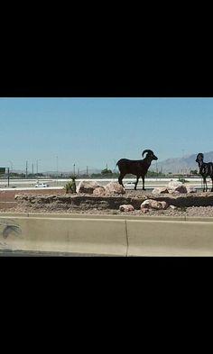 las vegas freeway art