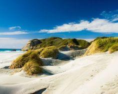 Golden Bay, Nelson, South Island, New Zealand