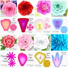 Free Giant Paper Flower Template. Learn to create beautiful paper flowers from our best selling book, The Art of Giant Paper Flowers.
