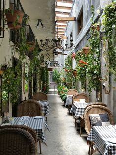 Italian Restaurant Decor, Outdoor Restaurant Design, Modern Restaurant, Greenhouse Cafe, Café Design, Italian Cafe, Sidewalk Cafe, Garden Cafe, Outdoor Cafe