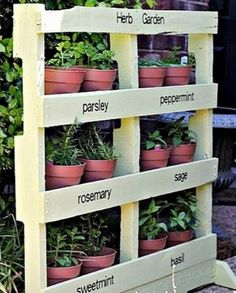 There are almost an unlimited number of diy garden projects enjoyed by people around the world but at the lead of the list consistently is gardening. Herb Garden Pallet, Diy Herb Garden, Pallets Garden, Herb Gardening, Wood Pallets, Herbs Garden, Pallet Gardening, Easy Garden, Garden Tips