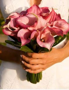 Wedding bouquets calla lily cascade for 2019 Lily Bouquet Wedding, Cascading Wedding Bouquets, Calla Lily Bouquet, Summer Wedding Bouquets, Blush Wedding Flowers, Bridal Flowers, February Wedding Colors, Disney Inspired Wedding, Marie